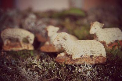 Santons lambs, corey amaro, brocante
