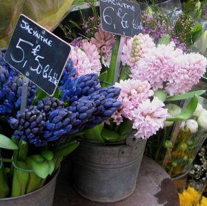 Flowersatthefrenchflora