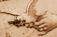 Bird_on_hand_2