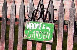 Welcometomygarden
